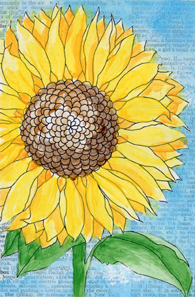 Sunflower Postcards